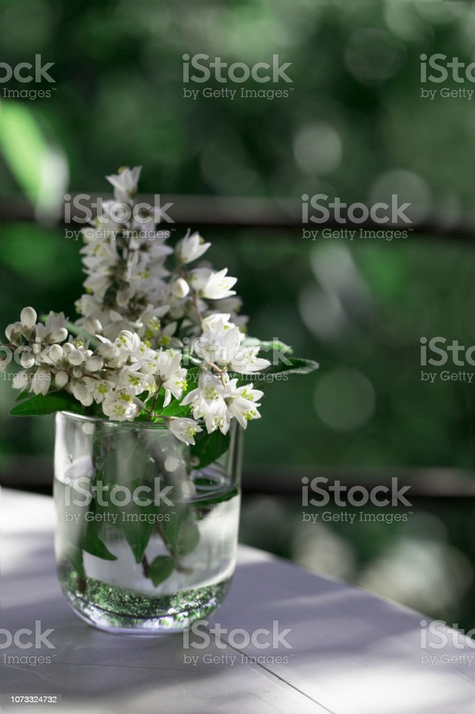 flower bouquet in glass vase on a white table in green garden. spring...
