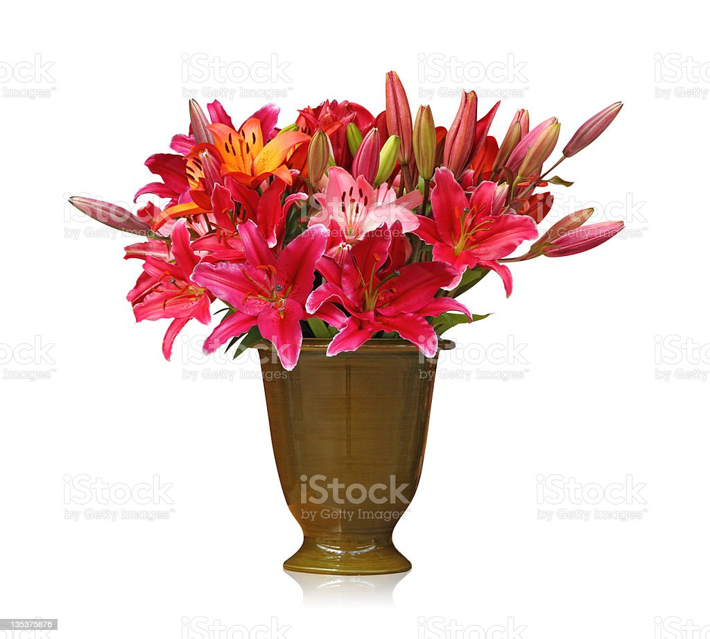 Flower bouquet isolated on white background royalty-free stock photo
