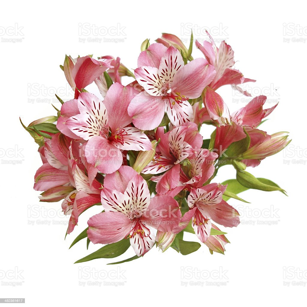 Flower Bouquet Top View Stock Photo More Pictures Of Alstroemeria