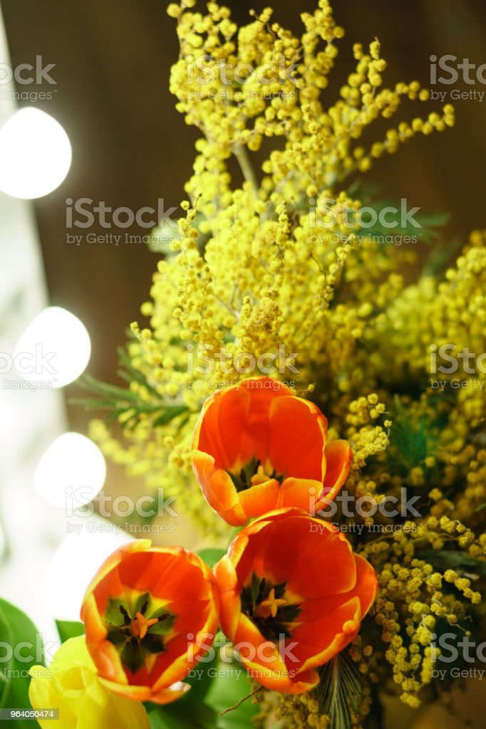 Flower bouquet. Tulips and mimosa - Royalty-free Arrangement Stock Photo