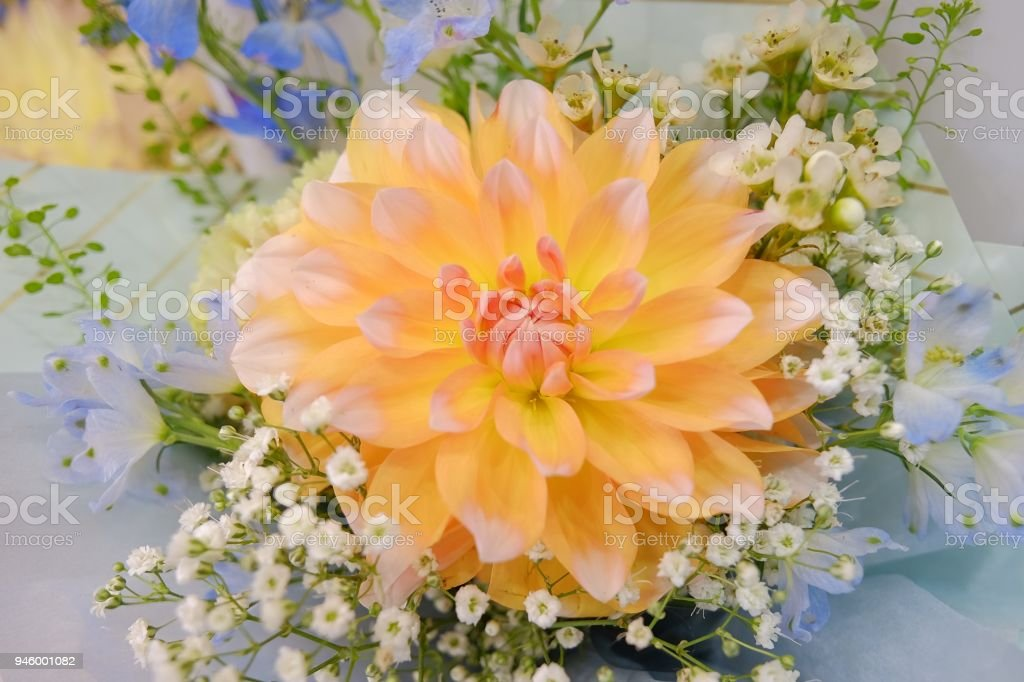 Flower Bouquet With Colorful Gypsophila And Dahlia Flower Flower ...
