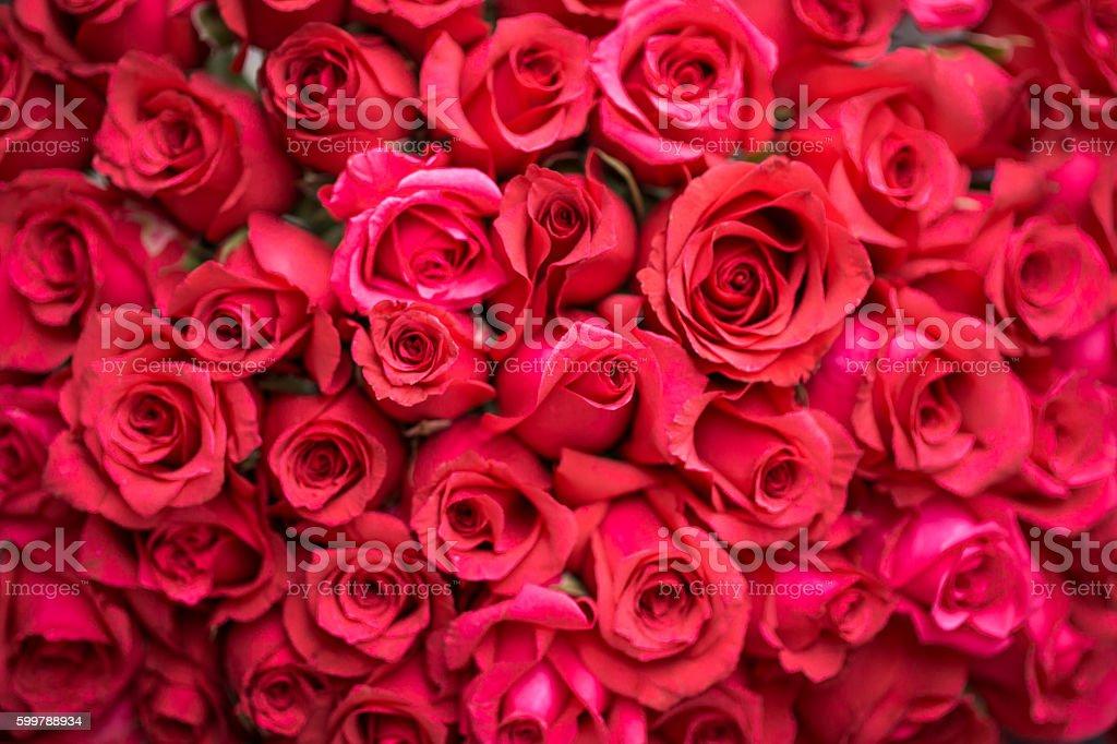 bouquet de fleurs enveloppé - Photo