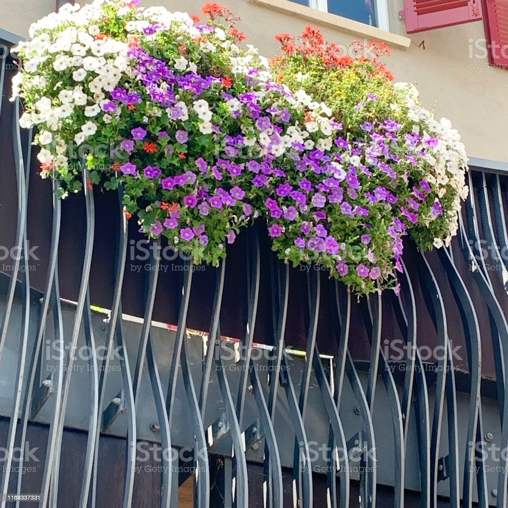 Flower box on the iron balcony