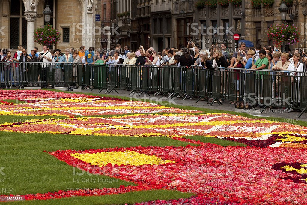 Flower Carpet - Brussels stock photo