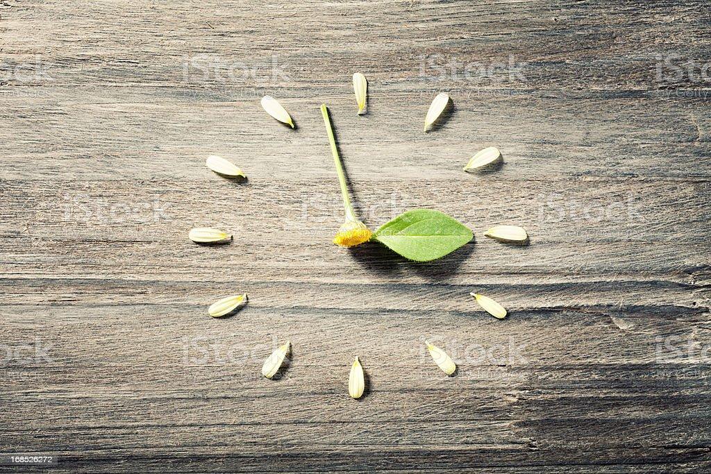 Horloge florale-heure d'été - Photo