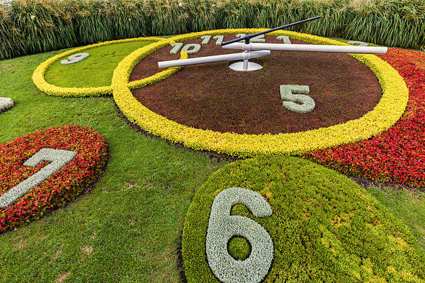 flower clock in geneva - blumenuhr stock-fotos und bilder