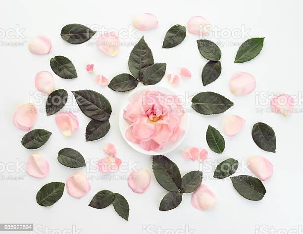 Flower composition flatlay picture id635922594?b=1&k=6&m=635922594&s=612x612&h=eetdfewuvp8p lnvtiv szoeuuj2hyk4j0ciujx7xbe=