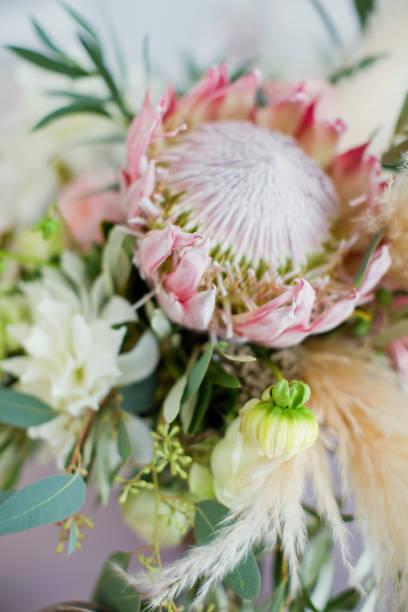 blume-zusammensetzung im boho-stil - protea strauß stock-fotos und bilder