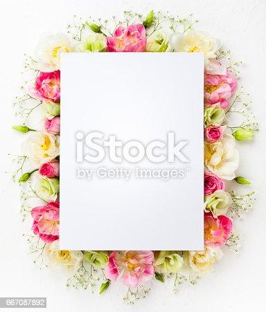 istock flower concept 667087892