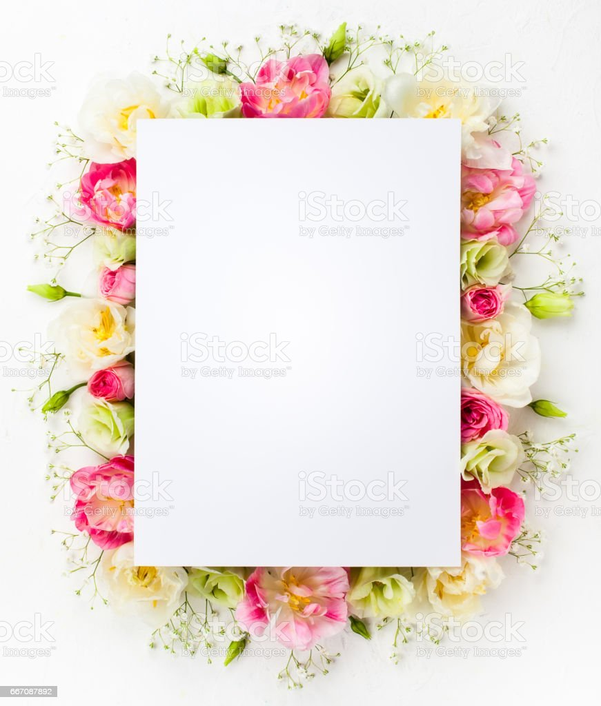 flower concept stock photo