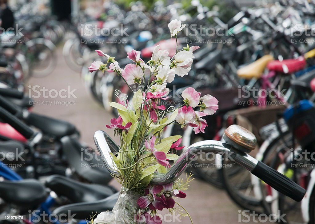 Flower decoration on a bike stock photo