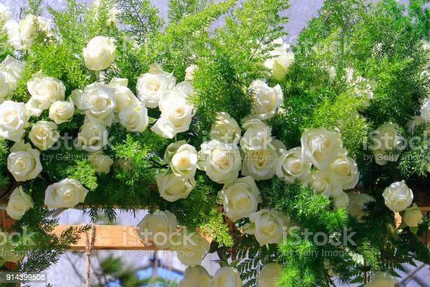 Flower decoration on street wall picture id914399508?b=1&k=6&m=914399508&s=612x612&h=n1cfjm7knqtpmge3qq51v iuubnmvtfhhvlud4gn2ok=