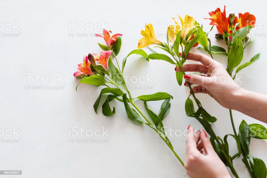 flower delivery florist yellow narcissus bouquet royalty-free stock photo