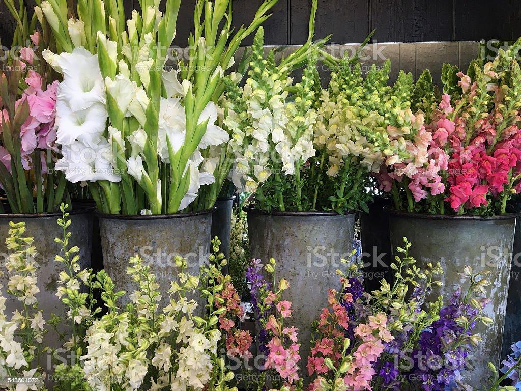 Flower Display stock photo