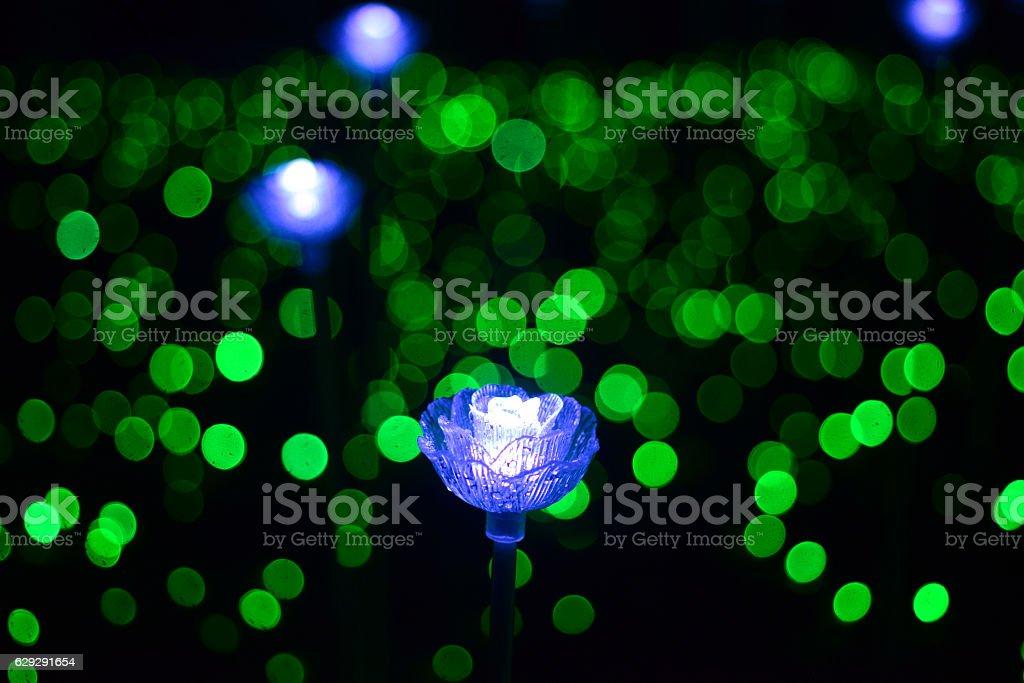 Flower festival of light. stock photo