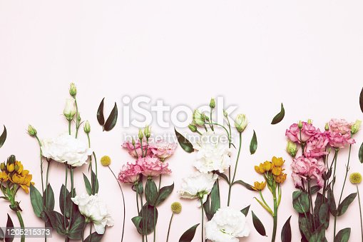 Flower flat lay for decorative design on white background. Minimal romantic hipster concept, mockup background.