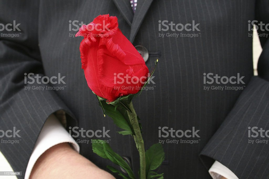 Flower for you, Valentine stock photo