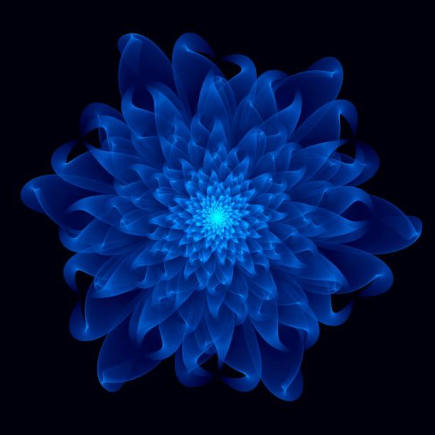 blume fraktale muster hintergründe - lotus zeichnung stock-fotos und bilder