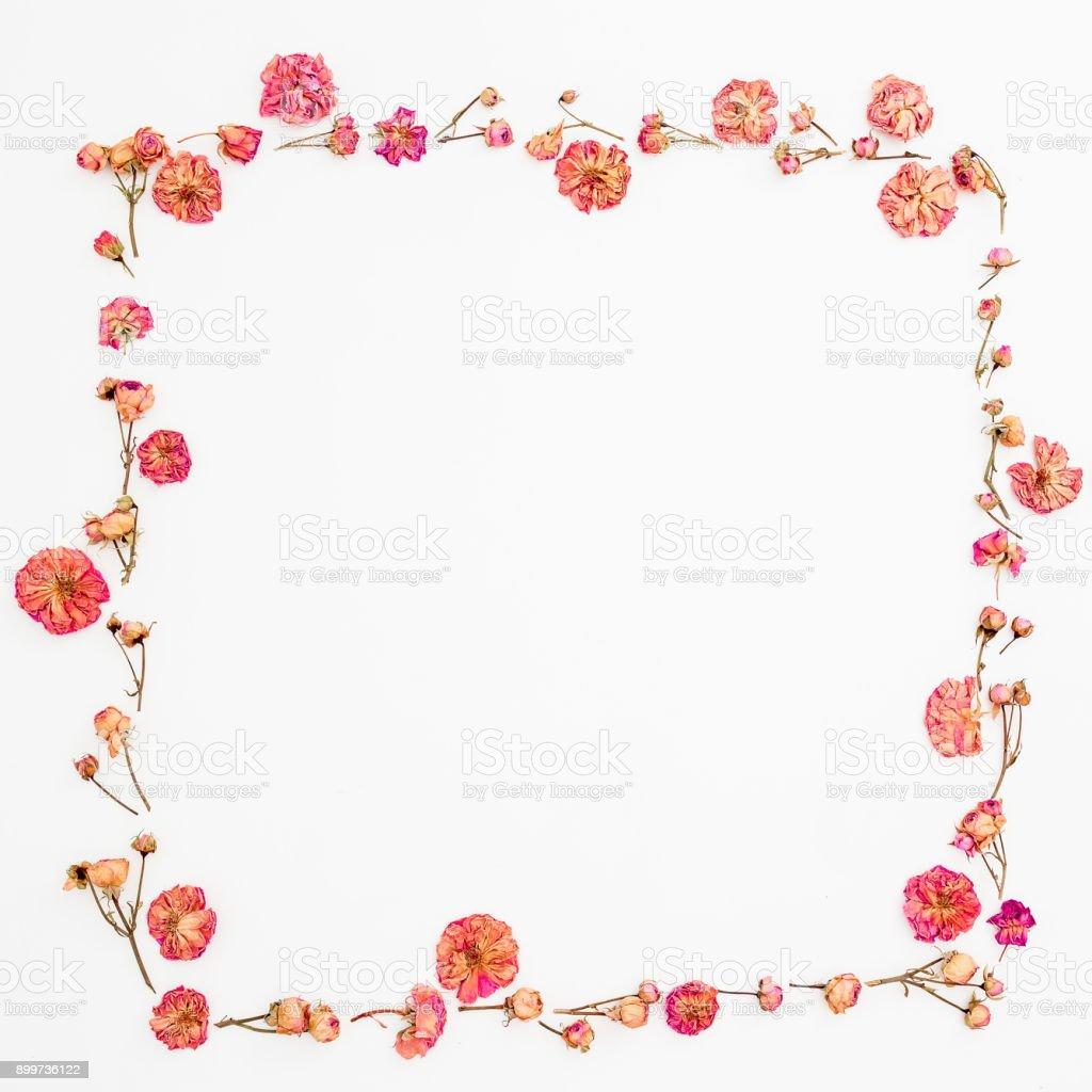 20fd29625bef7 Marco de flores de rosas sobre fondo blanco. Composición del día de San  Valentín.