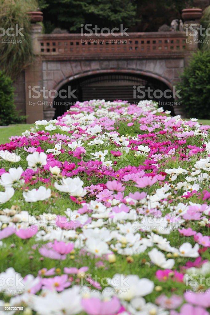 Flower Garden by a Bridge stock photo