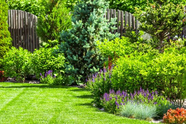 Flower garden in the backyard picture id980553654?b=1&k=6&m=980553654&s=612x612&w=0&h=6zrh1a8kxhcsbm9b8ka4unzrcx4fumiziighjzeyioo=