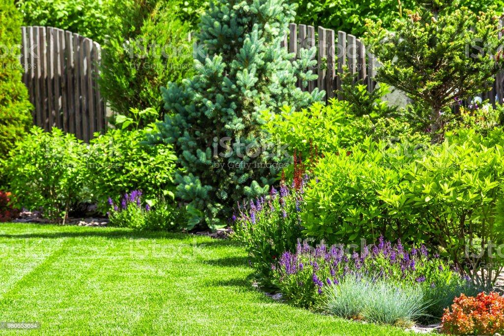 A flower garden in the backyard stock photo