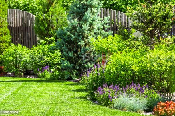 A flower garden in the backyard in the summer.