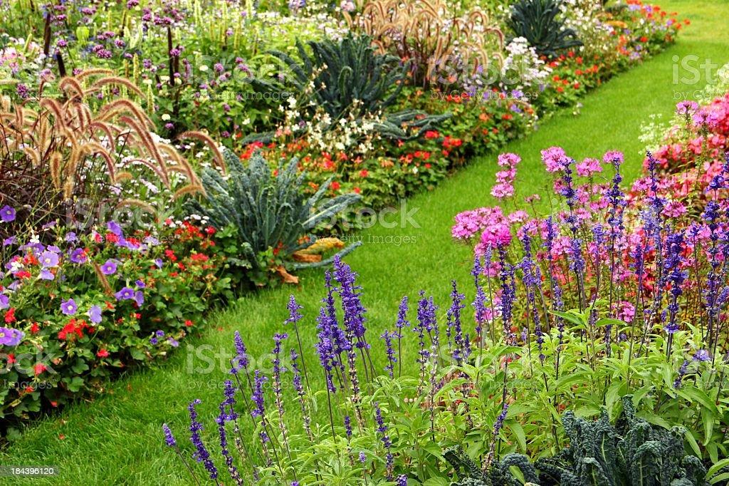 Flower garden – Foto