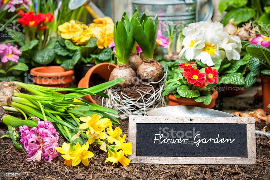 Flower garden sign stock photo