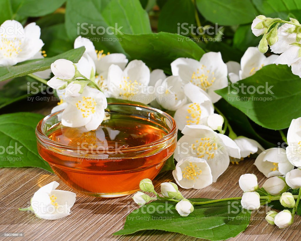 Flower honey and a blooming jasmine royaltyfri bildbanksbilder