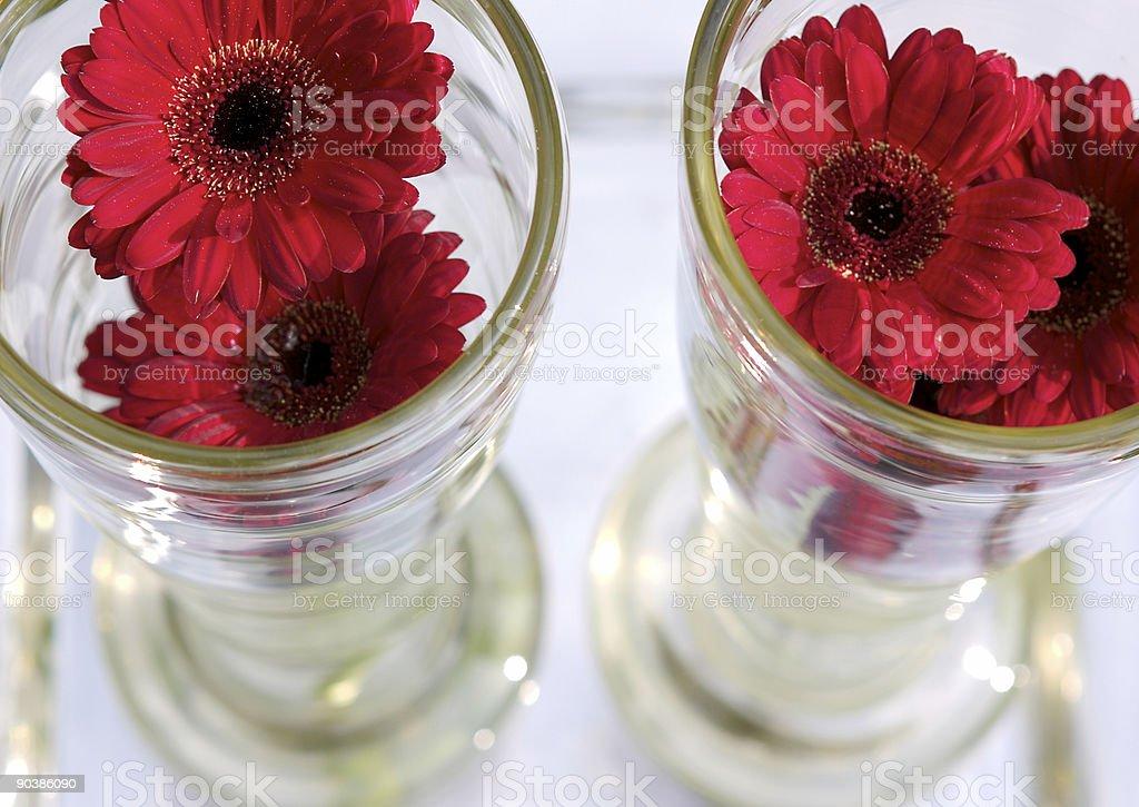 Flower In A Bottle stock photo