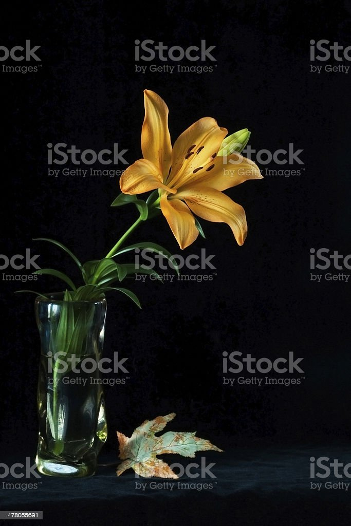 flower in a vase royalty-free stock photo