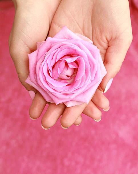 Blume in Händen – Foto