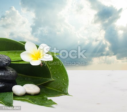 Flower, leaves and stones for massage therapy. Spa healthy concept with clouds sky and sunlight.