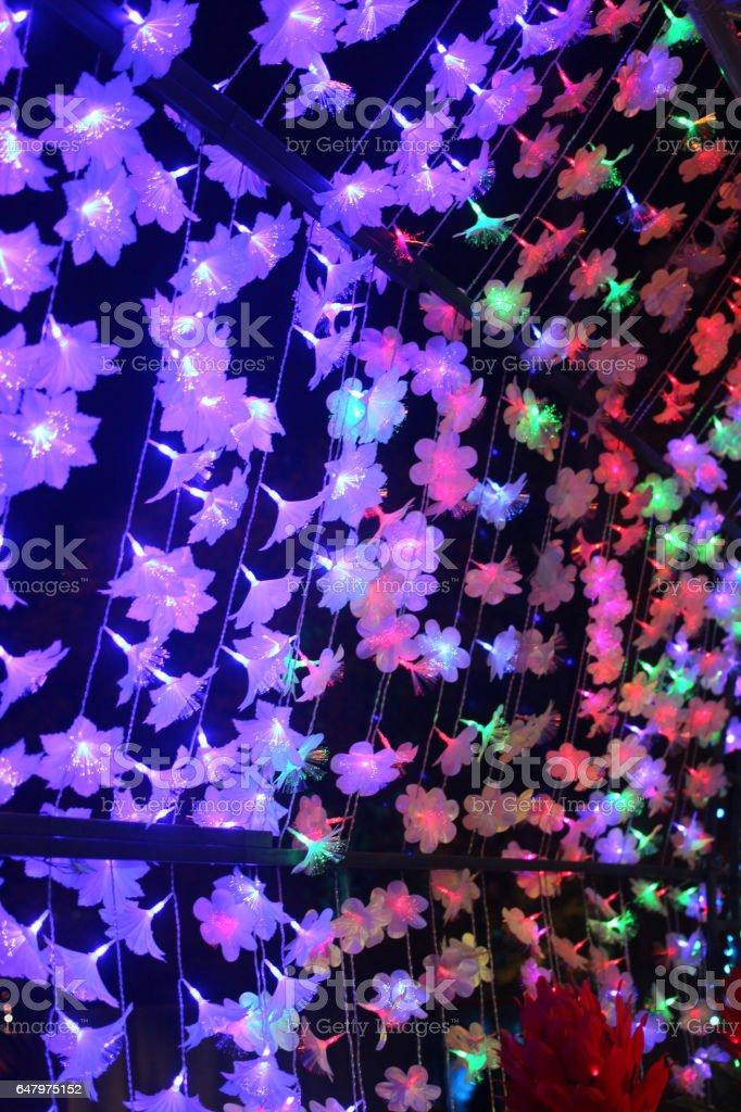 Flower light in the night in garden lighting. stock photo