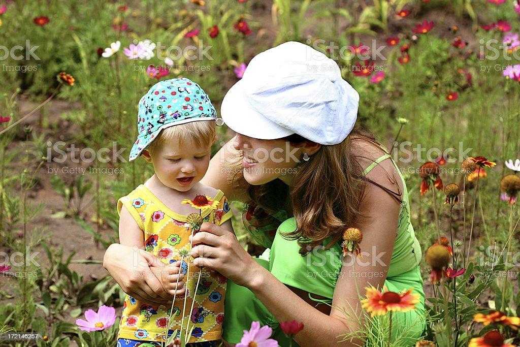 Flower love royalty-free stock photo