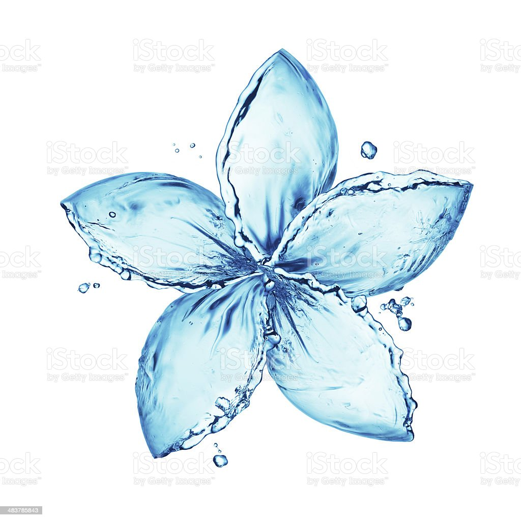 flower made of water splash stock photo