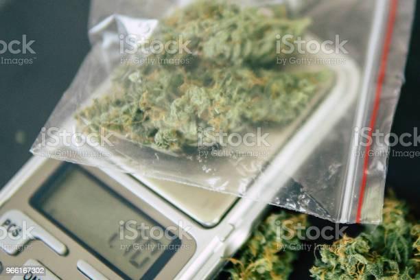 Blomma Marijuana På Ett Fjäll Begreppet Legalisera Örter Ogräs En Knarklangare Väger Cannabis-foton och fler bilder på Farm