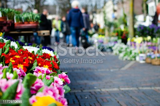 Colorful flower market background with stalls with copy space