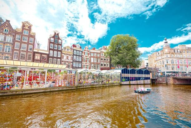 blumenmarkt in amsterdam (bloemenmarkt), weitwinkel - günstig nach amsterdam stock-fotos und bilder
