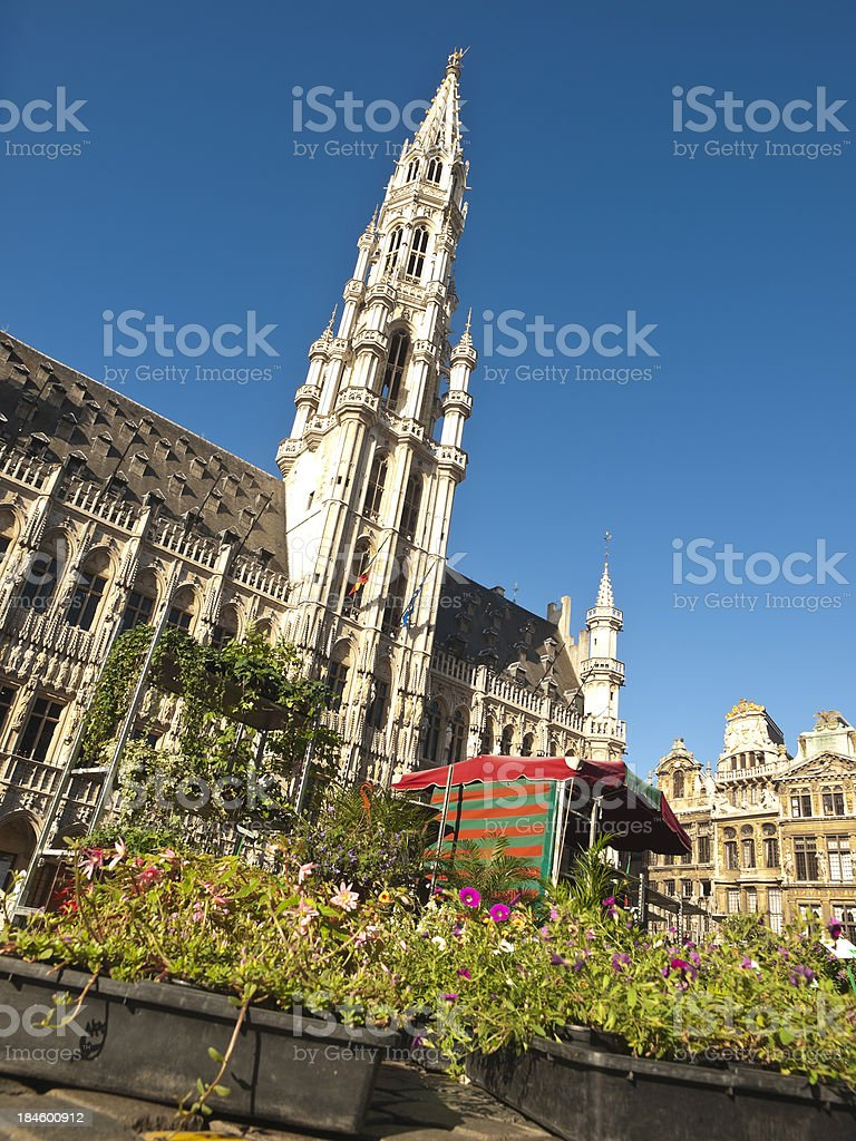 Flower market in Brussels royalty-free stock photo
