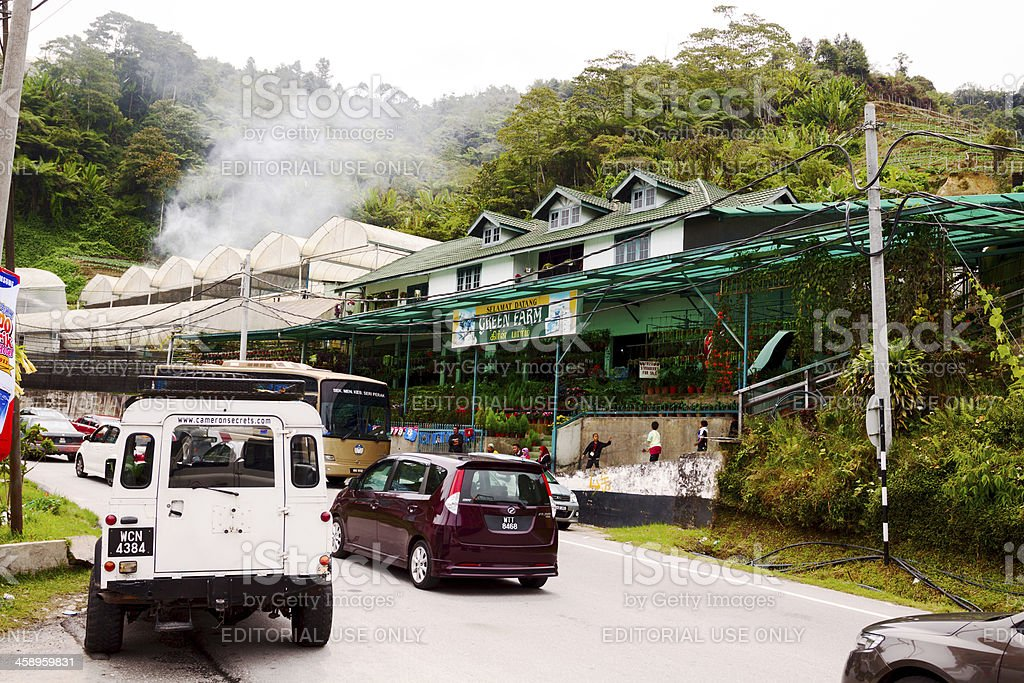 Flower market in Cameron Highlands royalty-free stock photo