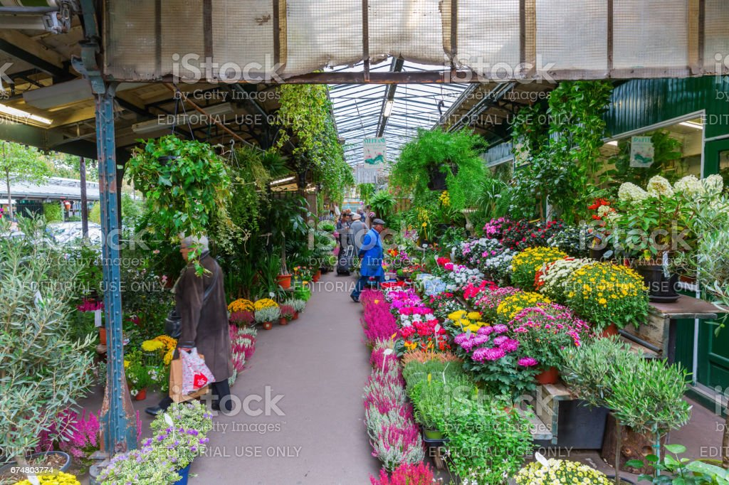 flower market in Paris stock photo