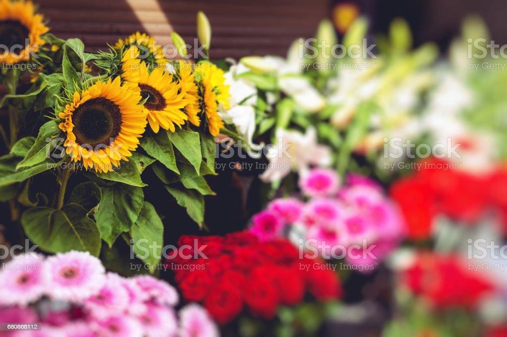 Flower market in Riga, Latvia royalty-free stock photo