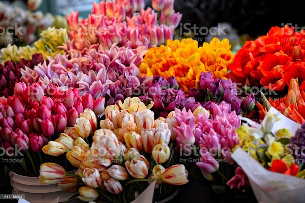 Flower Market stock photo