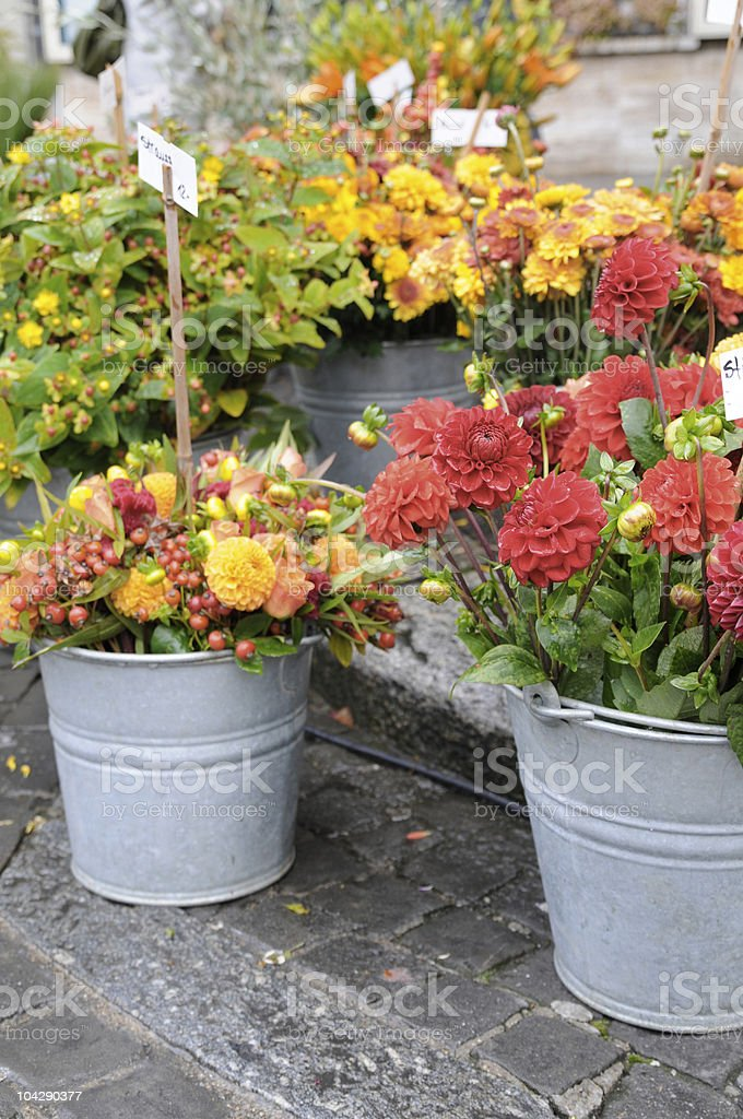 flower market series royalty-free stock photo