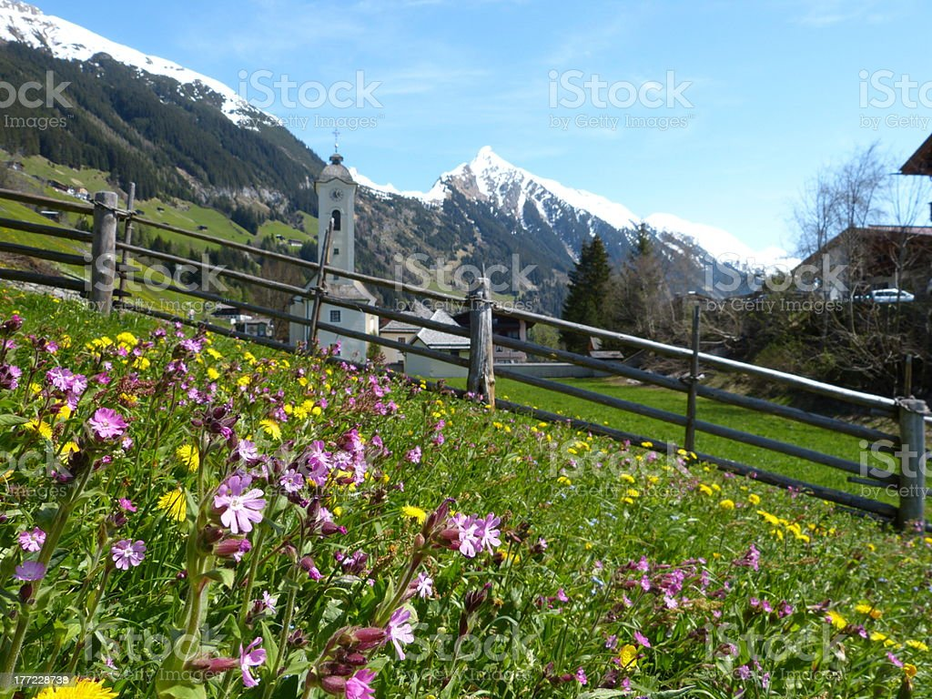 flower meadow with a mountain village in the background stock photo