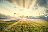 Landschaft mit Blumenwiese und Sonnenstrahlen