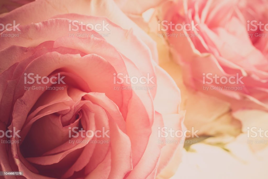 Royalty Free Couleur Pictures Images And Stock Photos Istock