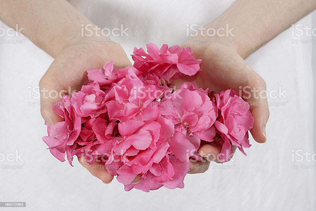 flower offering royalty-free stock photo
